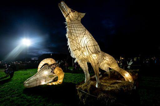 Wolf lantern